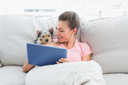 house pet: Cheerful woman using tablet with her yorkshire terrier at home in the living room