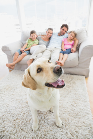 Happy family sitting on couch with their pet yellow labrador on the rug at home in the living room photo