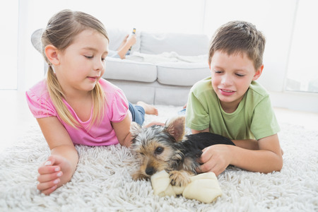 Siblings lying on rug with their yorkshire terrier puppy at home in the living room photo