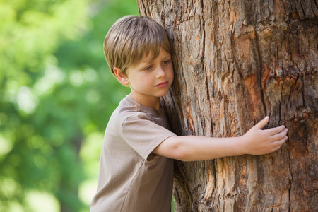 contemplative: Contemplative young boy hugging a tree at the park