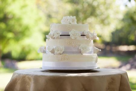 pastel de bodas: Vista de un pastel de bodas en la mesa en el parque