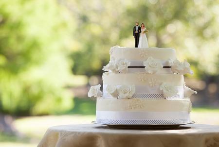 pastel de bodas: Primer plano de la pareja estatuilla en la torta de boda en el parque Foto de archivo