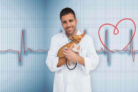 Vet holding chihuahua against medical background with red ecg line photo