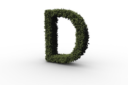 Capital letter d made of leaves on white background Stock Photo - 29010688