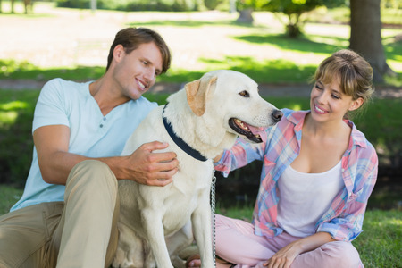 Happy couple sitting with their labrador in the park on a sunny day