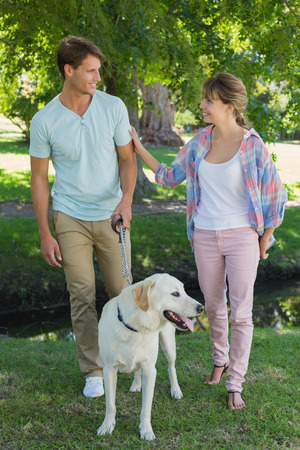 Happy couple walking with their labrador in the park on a sunny day photo