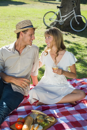 Cute smiling couple drinking white wine on a picnic on a sunny day photo