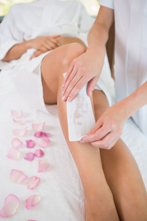 waxed: Woman getting her legs waxed by beauty therapist in the health spa