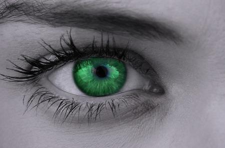 eye green: Ojo verde brillante en la cara femenina en gris
