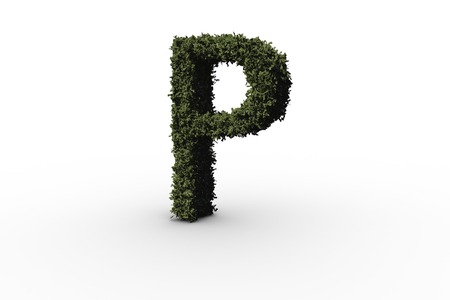 Letter p made of leaves on white background photo
