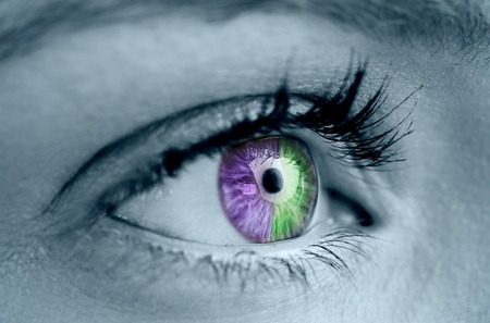 Purple and green eye on grey face looking ahead photo