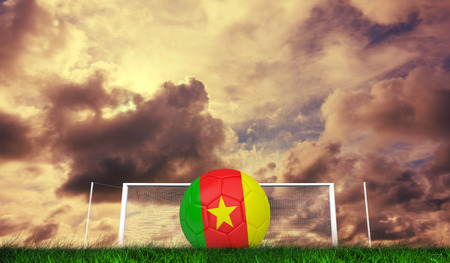Football in cameroon colours against green grass under cloudy sky photo
