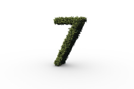numeracy: Seven made of leaves on white background