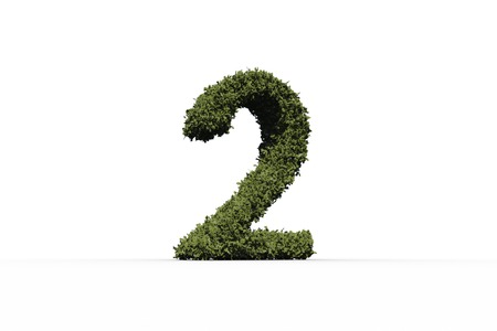 numeracy: Two made of leaves on white background
