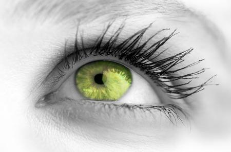 eye green: Ojo verde en la cara gris mirando hacia arriba