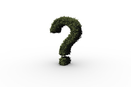 Question mark made of leaves on white background photo