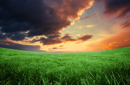 digital composite: Digital composite of green field under orange sky