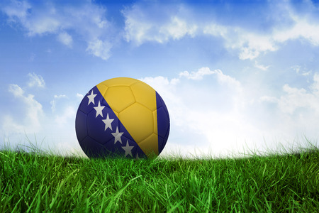 Football in bosnia and herzegovina colours on field of grass under blue sky photo
