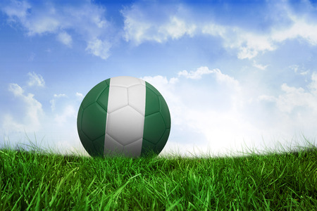 Football in nigeria colours on field of grass under blue sky photo