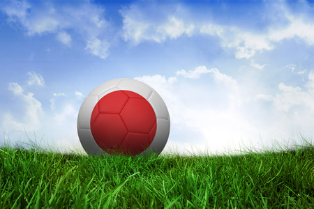 Football in japan colours on field of grass under blue sky photo