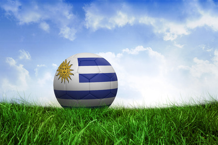 Football in uruguay colours on field of grass under blue sky photo