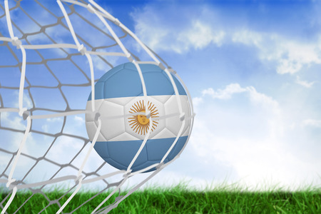 Football in argentina colours at back of net against field of grass under blue sky photo