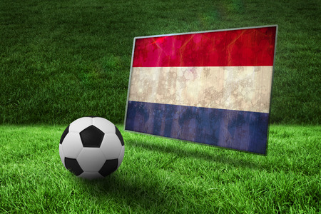Black and white football on grass against netherlands flag in grunge effect photo