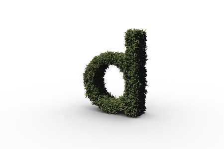 Lower case letter d made of leaves on white background Stock Photo - 29095428