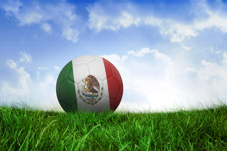 Football in mexico colours on field of grass under blue sky photo