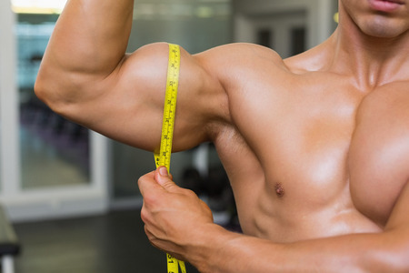 male bodybuilder: Close-up mid section of muscular man measuring biceps in gym