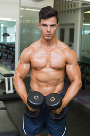 clenching: Portrait of a shirtless muscular man flexing muscles with dumbbells in gym