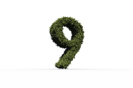 numeracy: Nine made of leaves on white background Stock Photo