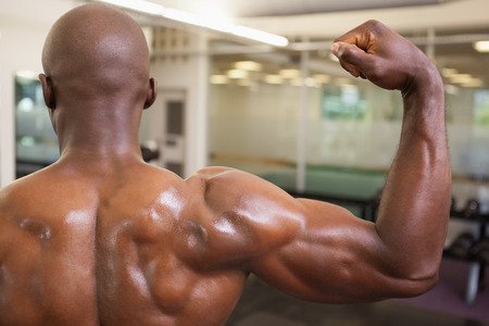 clenching: Rear view of shirtless young muscular man flexing muscles in gym