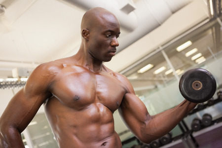 Shirtless young muscular man exercising with dumbbell in gym photo