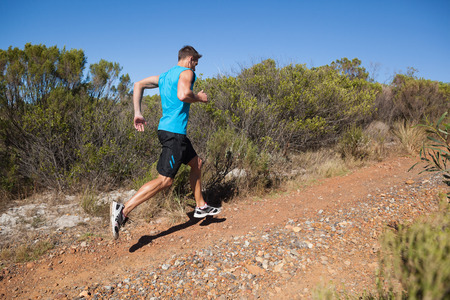 trails: Athletic man jogging up country trail on a sunny day