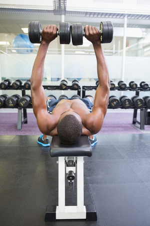 Shirtless young muscular man exercising with dumbbells in gym photo