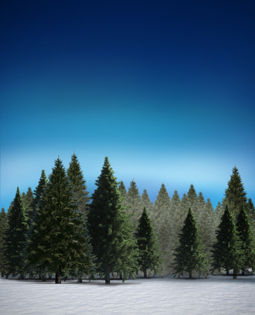 unknown age: Digitally generated fir tree forest in snowy landscape Stock Photo