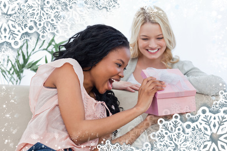 A delighted woman looks at a present given to her by a friend against snow photo