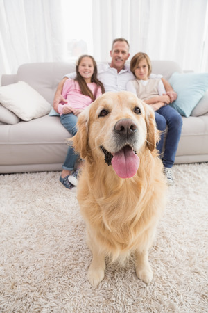 Family sitting on the couch with golden retriever in foreground at home in the living room photo