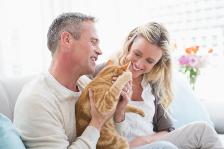 Smiling couple petting their gringer cat on the couch at home in the living room photo