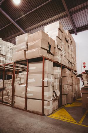cajas de carton: Interior del almac�n con cajas de cart�n