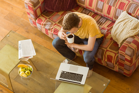 lifestyle caucasian: Young man using laptop on his couch at home in the living room