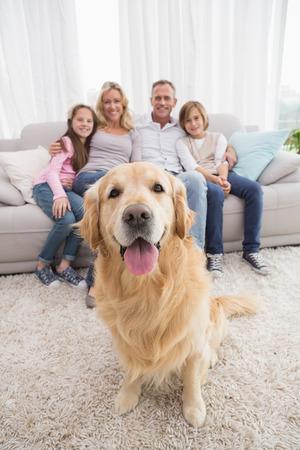 Familia que se sienta en el sofá con el perro perdiguero de oro en el primer plano como en casa en la sala de estar Foto de archivo