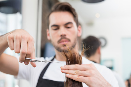 hair stylist: Handsome hair stylist cutting hair at the hair salon