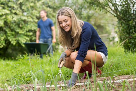 young couple: Cute couple gardening on sunny day at home in the garden