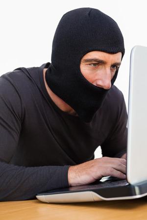 intruding: Burglar with balaclava using laptop on white background Stock Photo
