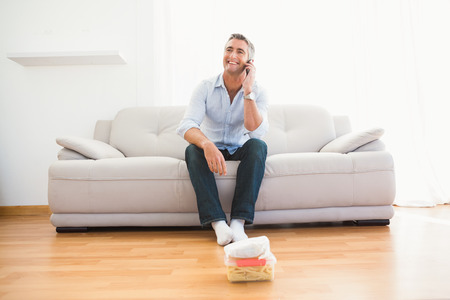 life at home: Smiling man phoning on the couch at home in the living room Stock Photo
