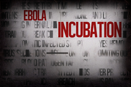 buzzword: Digitally generated ebola word cluster with bold text Stock Photo
