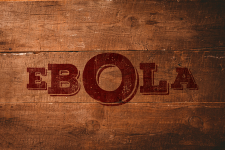 pandemic: Red ebola text against overhead of wooden planks