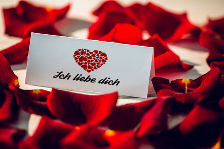 in liebe: ich liebe dich against card surrounded by petals Stock Photo